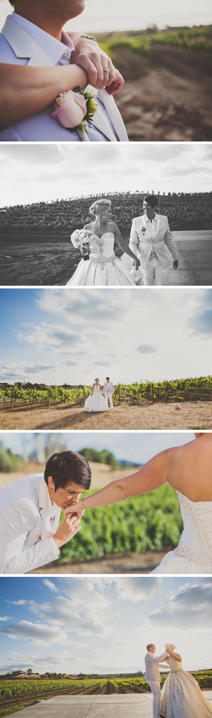 Danza Del Sol Winery Wedding Photos Temecula California