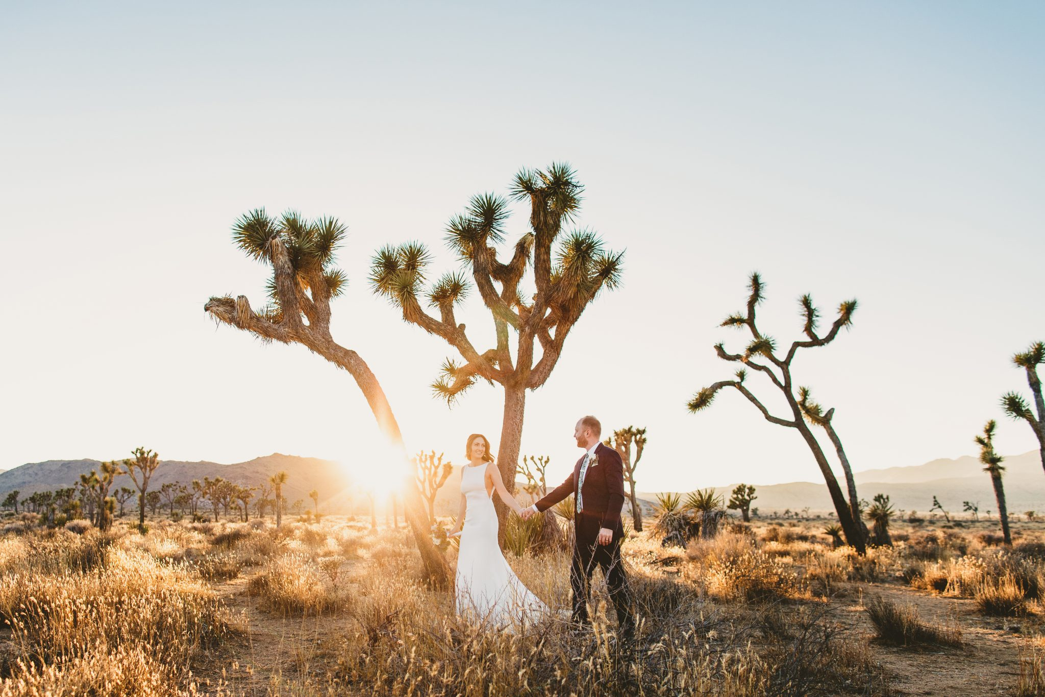 Adventure Elopement Joshua Tree