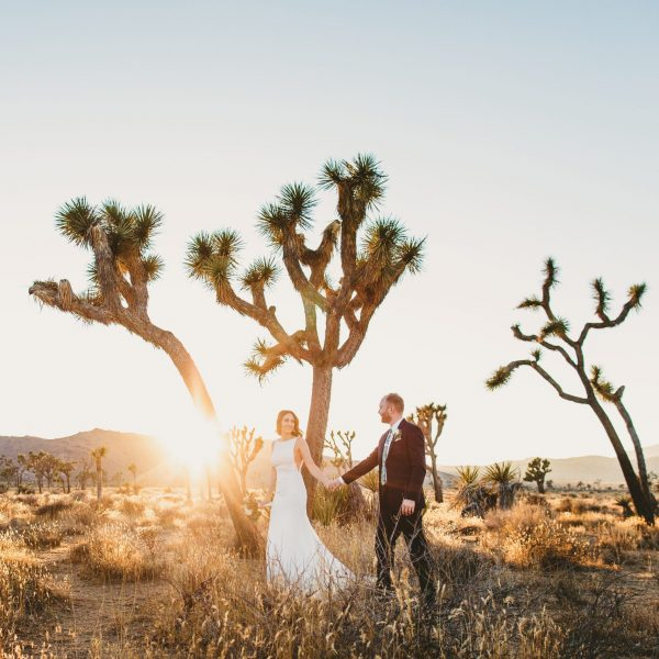 Hidden Valley Loop Elopement